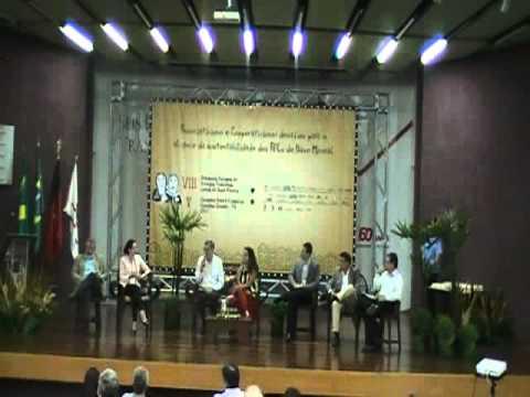VIII Seminário Nacional de Arranjos Produtivos Locais de Base Mineral - 2011