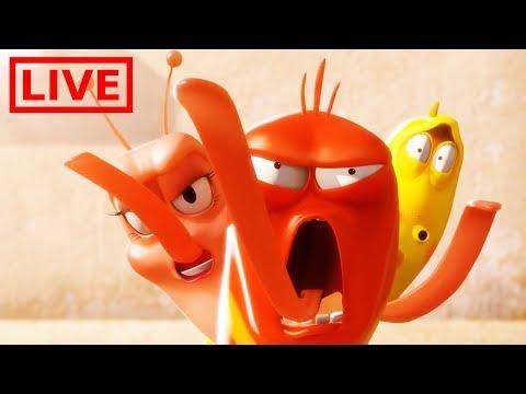 Download 🔴 LIVE LARVA | THE GRAND BATTLE | BEST OF LARVA | Cartoons For Children | LARVA  Mp4 baru