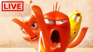 🔴 LIVE LARVA | THE GRAND BATTLE | BEST OF LARVA | Cartoons For Children | LARVA Official