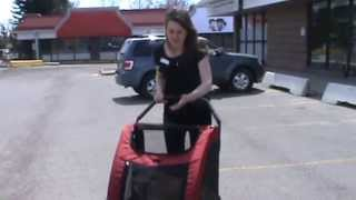 Veterinarian In Calgary Demos Use And Benefit Of Pet Stroller For Senior Pets