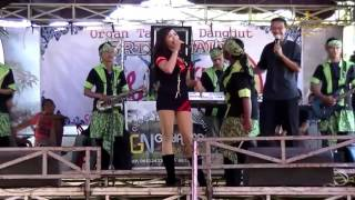 Video Biduan Dangdut Bening Dangdut hot Hajatan Kampung download MP3, 3GP, MP4, WEBM, AVI, FLV November 2017