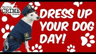 Dress Up You Dog Day!