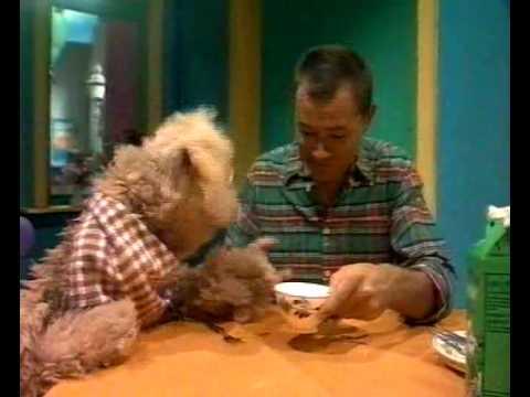 Sesamstraat - Tommie eet yoghurt met een vork