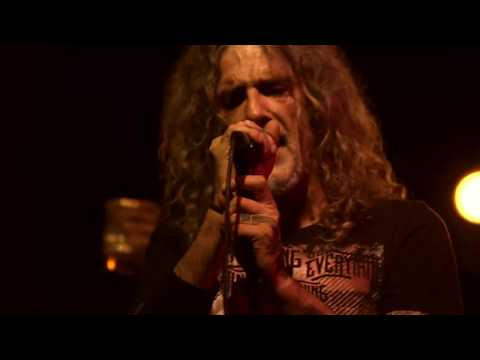 NIGHTSTALKER - The Dog That No-one Wanted (HD Official Music Video)