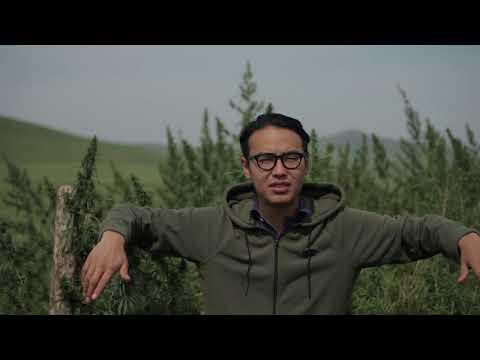 mongolia cannabis legend documentary