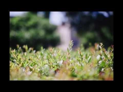 Duo Cueca   Summer Garden , Sergio Assad
