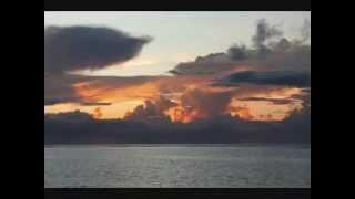 "Mahler : Symphony No. 1 in D major, ""Titan"" - II. Kraftig bewegt, doch nicht zu schnell"