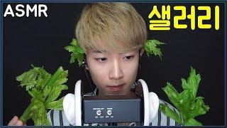 귓가에서 먹는 샐러리 먹방 ASMR Celery Eating Sounds Korean Male 남자 한국어 3DIO