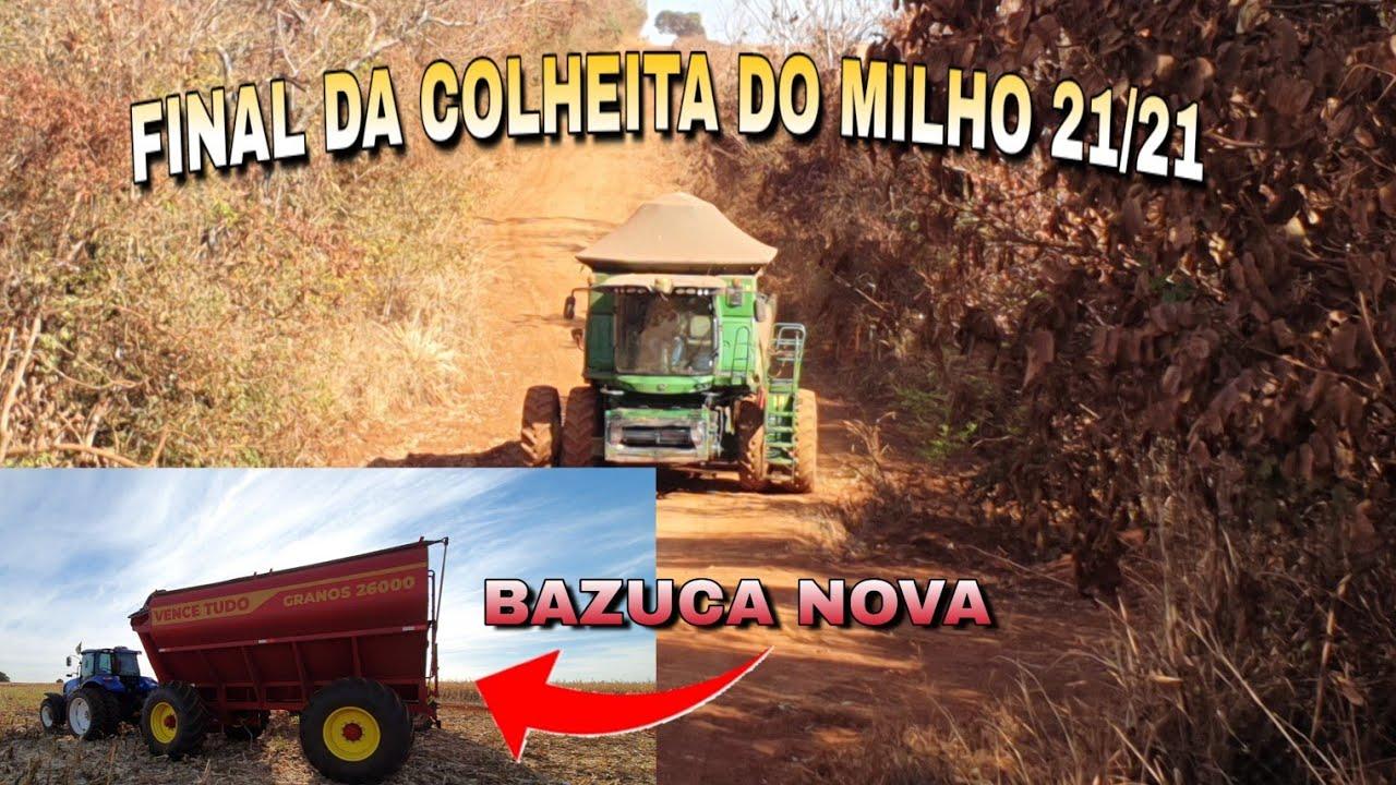 FINAL DA COLHEITA DO MILHO E BASUCA NOVA!