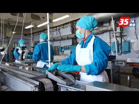 Производство консервов и колбасы возобновили на птицефабрике в Шексне