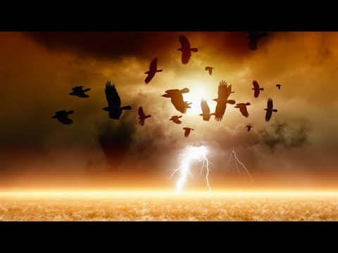 TPMR 10/25/17   EXPLOSIVE RISE OF WITCHCRAFT ACROSS THE GLOBE   PAUL McGUIRE