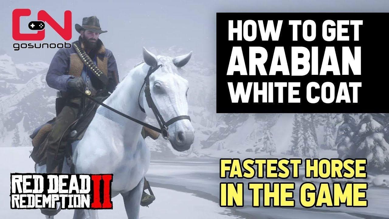 Red Dead Redemption 2 How To Get Free Arabian Best Horse