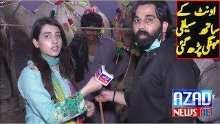 Camel Mandi in Lahore with Maryam Arshad| Bull Mandi 2018