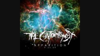 Watch Contortionist Infection video