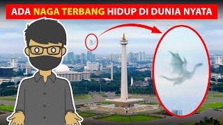 Download PENAMPAKAN NAGA TERBANG DI DUNIA NYATA