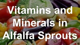 Vitamins and Minerals in Alfalfa Sprouts - Health Benefits of Alfalfa Sprouts