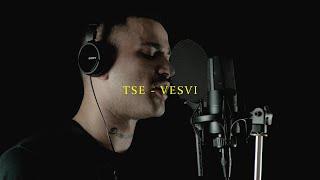 TSE - VESVI