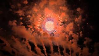 幅700mにも及ぶワイドな打ち上げのエンディング花火です。 煙が残念でした。 【大会名】赤川花火大会 【日時】2014年8月16日 【場所】C席 【プロ...