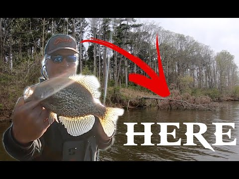 How To Find Spawning Crappie