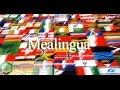 Setting up mealingua - translation of words on WordPress site