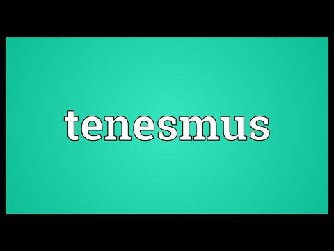 Header of tenesmus