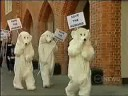 From http://www.youtube.com/watch?v=mHzgN1J6E_k: MPH POLAR BEARS PROTEST AGANIST Climate Change