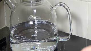 Trendglas 111007 Borosilicate Glass Water Kettle with Glass Lid