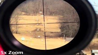 Bushnell AR 223 3-12x40 BDC 1100 Yards Review