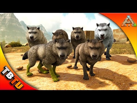 ark how to raise baby dire wolf