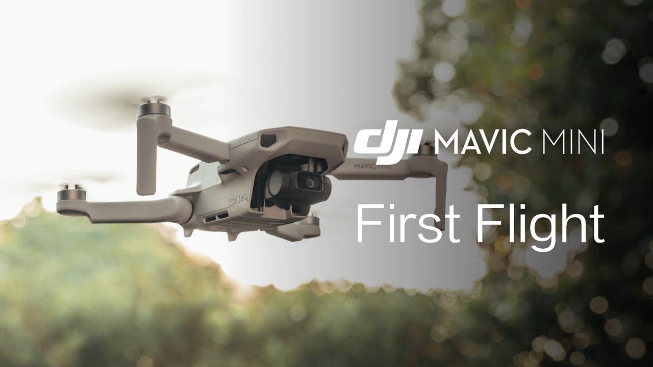 Dji Mavic Mini Ultimate Review With Comparison Table