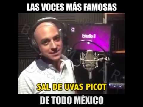 Las voces más conocidas de México (audios latinos)