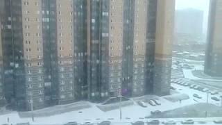 видео Заказ автобуса для школьников - цена аренды в Санкт-Петербурге