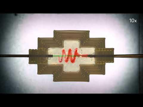 0 - Die 3D-Bioprinting-Technik von UC San Diego erstellt aus natürlichen Materialien lebensechte Gewebe