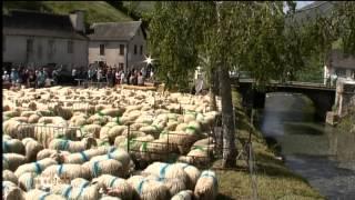 EN ROUTE VERS LES ESTIVES - Émission spéciale depuis la Vallée d'Aspe - Pyrénées