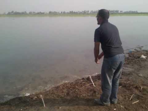 Fishing at Ghazi ghat by Isaac Ehsan and Imran