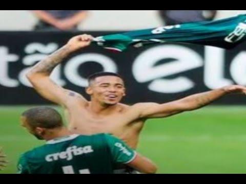 Palmeiras 1 x 0 Botafogo 4febfe17eaba5