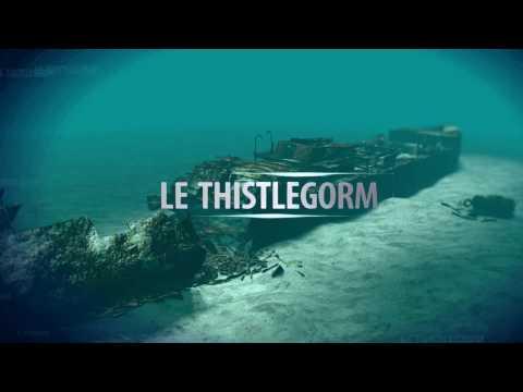 Epave Du Thistlegorm - Golf De Suez - Mer Rouge - Egypte - Oct 16 - Dream Dive - Frédéric Thollet