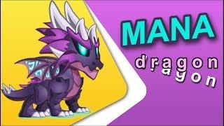 Dragon City Burglar Tower Island Episode 2 Mana Dragon Level Up