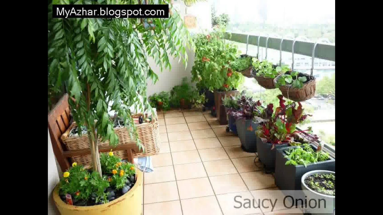 Apartment Garden For Beginners New years resolution container
