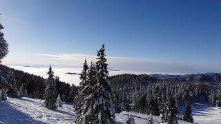 Bulgaria Skiing - Pamporovo Green Ski run number 6