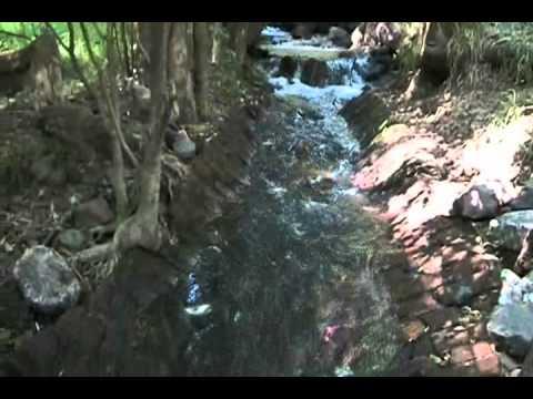 RIO DE DIAMANTES (gal # 71) de YouTube · Duración:  4 minutos 18 segundos