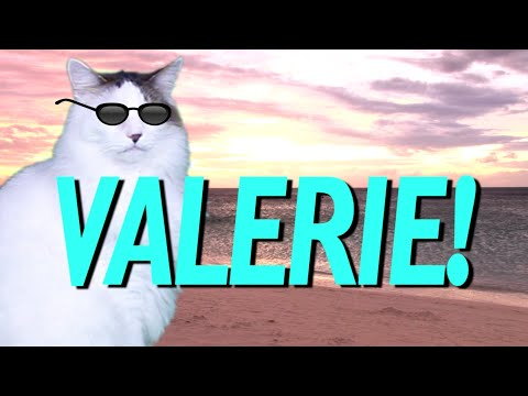 Happy Birthday Valerie Meme Wwwpicturessocom