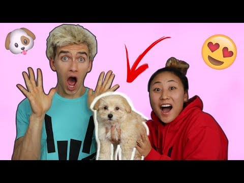 SURPRISING MY BROTHER WITH A PUPPY!! EMOTIONAL