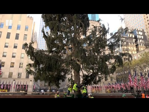 Rockefeller-Centers-Scraggly-Christmas-Tree-Is-Perfect-For-2020