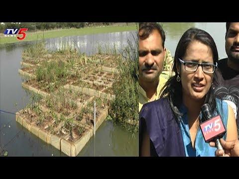 నీటిపై తేలాడే వ్యవసాయ క్షేత్రం..! | Floating Island In Neknampur Lake | Hyderabad | TV5 News