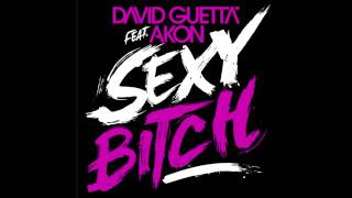 David Guetta ft Akon - Sexy Bitch (HQ)
