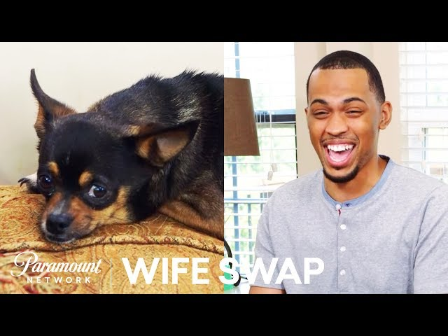 Join. And picture sex swapping wife are not