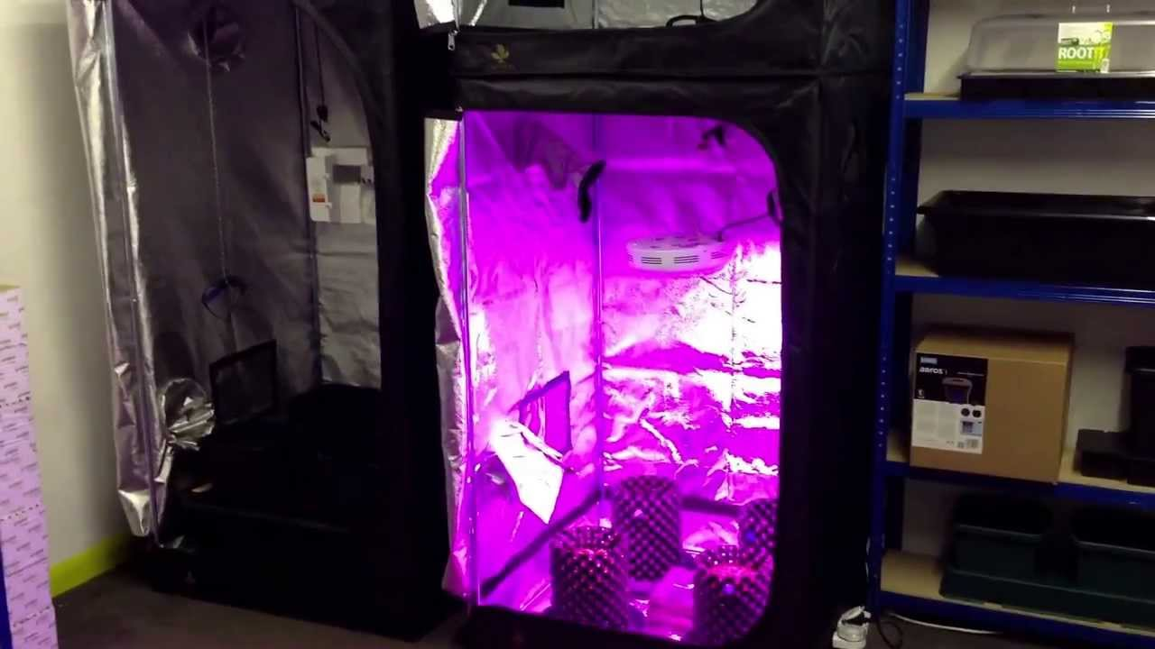 Grow tent with led tests coming soon .hg-hydroponics.co.uk ule biggest grown tent supplier - YouTube : complete led grow tent - memphite.com