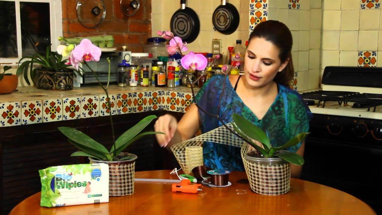 Orquidea decorada para regalo youtube for Macetas para exteriores decoracion