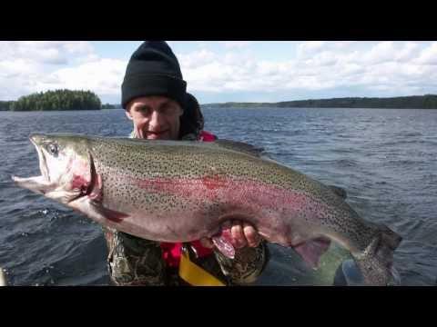 Dalsland Fishing Schweden - wir haben alles für Ihre Angelreise!